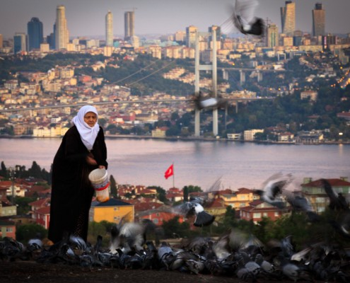 An old woman is feeding the pigeons while the city is starting to another day, Istanbul, Turkey